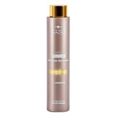 Шампунь для придания блеска волосам Хаир Компани Inimitable Style Illuminating Shampoo Hair Company