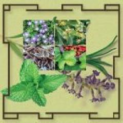 Травяной чай Релакс для снятия стресса и усталости Виталис, ЭГО Vitalis Dr.Joseph (EGO)