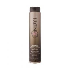 Себорегулирующий шампунь для жирной кожи головы Диксон Andy Seboregolatore Shampoo Dikson