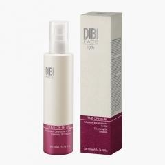 Очищающий настой в масле Диби Time of ritual face Cleansing oil infusion Dibi