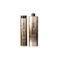 Шампунь для окрашенных волос Диксон Andy Riparatore Shampoo Dikson