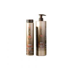 Шампунь стимулирующий, помогающий предотвратить выпадение волос Диксон Andy Stimolante Shampoo Dikson