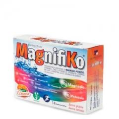 Комплекс для повышения стрессоустойчивости Магнифико MagnifiKo Homeosyn